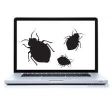 bed bugs in computers