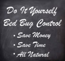 Bed Bugs DIY – Do it Yourself Bed Bugs